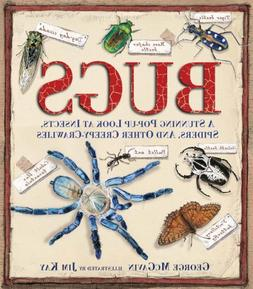 Bugs: A Stunning Pop-up Look at Insects, Spiders, and Other