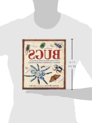 Bugs: A Pop-up Look at Insects, and